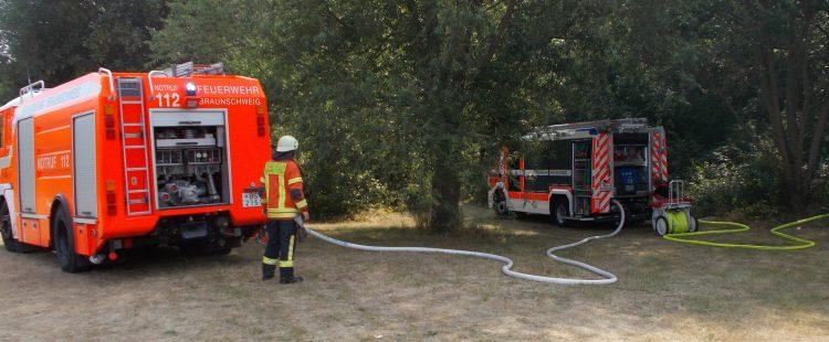 Buschfeuer auf dem Gelände der Technischen Universität