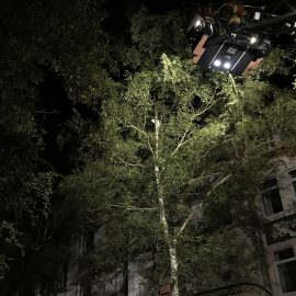 ausgeleuchteter Baum mit Drehleiter